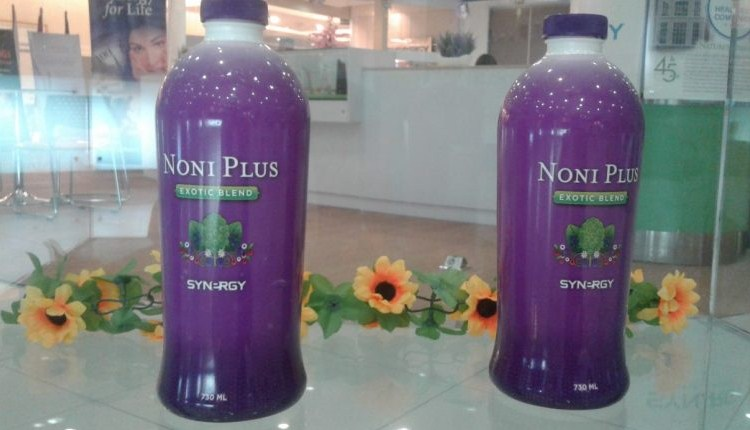 noni plus synergy